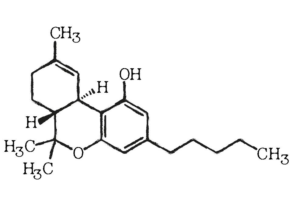 tétrahydrocannabinol-cannabis